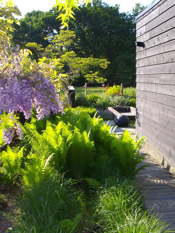 jardin perdrier suce erdre nantes saisonnalite fougere euphorbe glycine vert prunus cerisier fleur. Black Bedroom Furniture Sets. Home Design Ideas