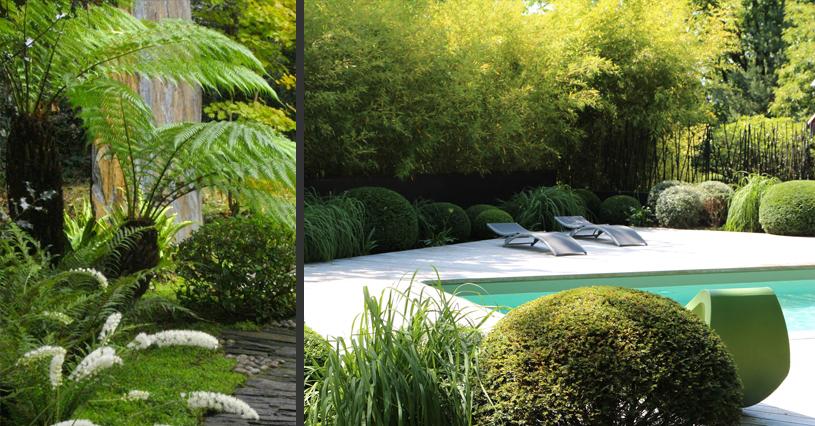 Plus adapté amenagement-piscine-terrasse-ipe-exotique-schiste-galet-fougere PM-03